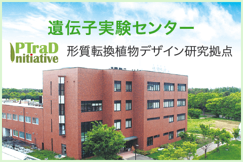 遺伝子実験センター|筑波大学つくば機能植物イノベーション研究センター(T-PIRC)