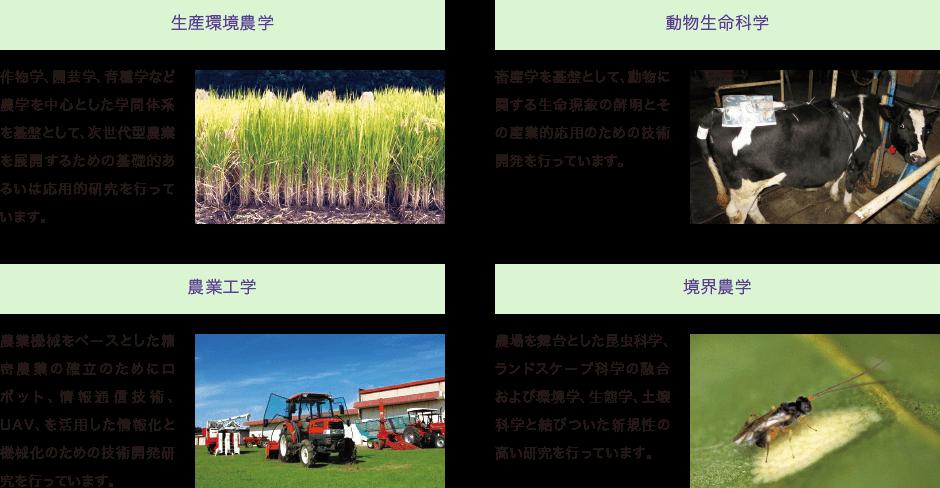 次世代農業研究部門(T-PIRC農場)|筑波大学つくば機能植物イノベーション研究センター(T-PIRC)