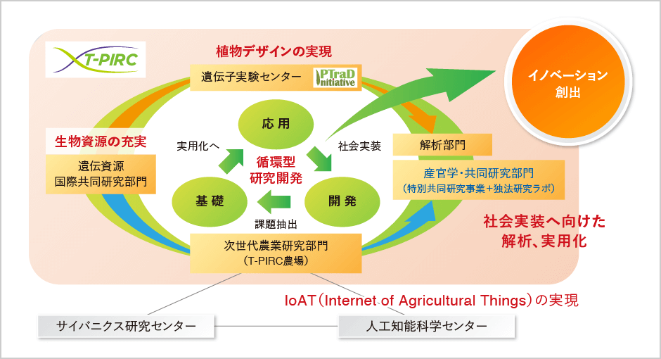産官学・共同研究部門|筑波大学つくば機能植物イノベーション研究センター(T-PIRC)