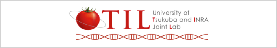 日仏国際ジョイントラボ(TIL)|筑波大学つくば機能植物イノベーション研究センター(T-PIRC)